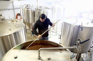 Worker in brewery, mixing barley grains in brew tankの写真素材 [FYI03559339]