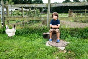 Boy sitting on farm with chickenの写真素材 [FYI03560144]