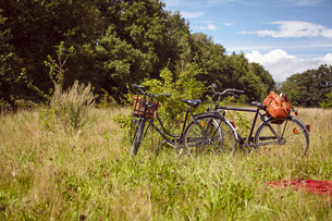Two bicycles parked by bush in rural fieldの写真素材 [FYI03560997]