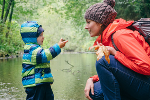 Mother and son exploring stream in forest, Vancouver, British Columbia, Canadaの写真素材 [FYI03561444]