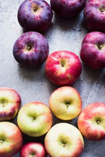 Variety of Empire and Honeycrisp apples, overhead viewの写真素材 [FYI03561604]