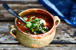 Bowl of soup garnished with watercress, on wooden tableの写真素材 [FYI03561817]