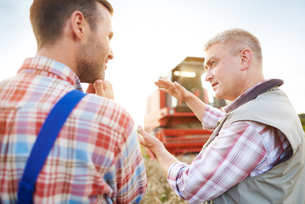 Rear view of farmers in wheat field chattingの写真素材 [FYI03561845]