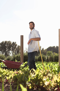 Portrait of mature man standing in vegetable patchの写真素材 [FYI03562634]