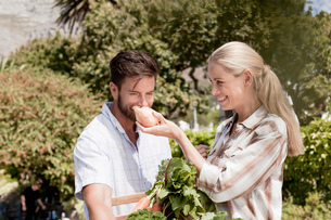 Mature couple in garden, woman holding up fresh onion for man to smellの写真素材 [FYI03562644]