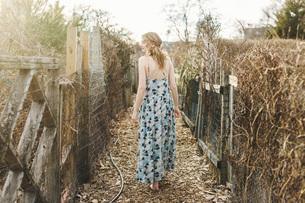 Young woman walking along rural farm pathway, rear viewの写真素材 [FYI03563785]