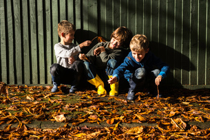 Three young boys, sitting against fence, surrounded by autumn leavesの写真素材 [FYI03565179]