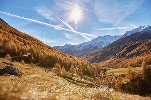 Scenic view, Schnalstal, South Tyrol, Italyの写真素材 [FYI03566018]