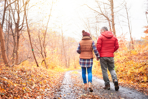 Mature couple walking along rural pathway, in autumn, rear viewの写真素材 [FYI03566733]