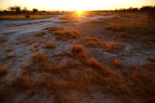 Sunset over plain landscape, Namibia, Africaの写真素材 [FYI03567562]