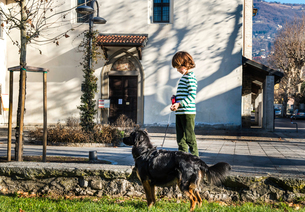 Boy playing with his best friend, his pet dogの写真素材 [FYI03568378]