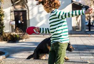 Boy playing with his best friend, his pet dogの写真素材 [FYI03568379]