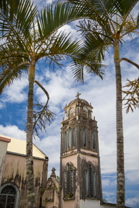 Church bell tower and palm trees, Reunion Islandの写真素材 [FYI03568558]