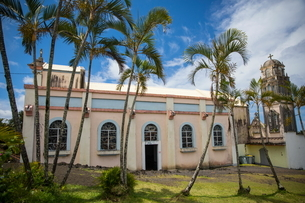 Pink church and palm trees, Reunion Islandの写真素材 [FYI03568559]