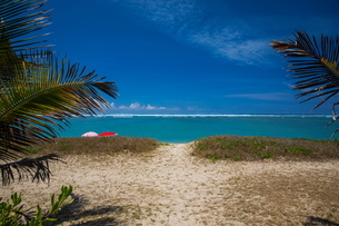 View of beach and Indian Ocean, Reunion Islandの写真素材 [FYI03568565]