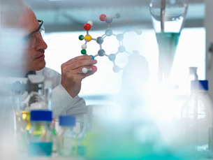 Researcher using a molecular model to understand a chemical formula in a laboratoryの写真素材 [FYI03570436]