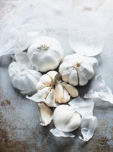 Studio shot, overhead view of garlic bulbs and clovesの写真素材 [FYI03570656]