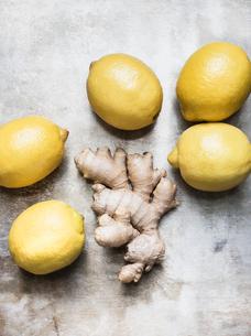 Studio shot, overhead view of root ginger and lemonsの写真素材 [FYI03570667]