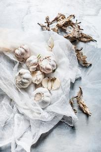 Studio shot, overhead view of garlic bulbs on muslinの写真素材 [FYI03570672]