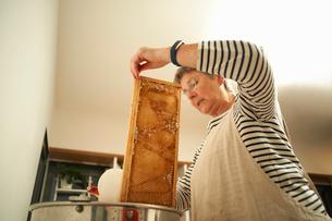 Senior female beekeeper scraping honeycomb into kitchen saucepanの写真素材 [FYI03570716]