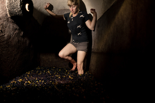 Barefoot woman stamping on grapes in vineyard vatの写真素材 [FYI03570842]