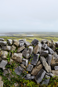 Stone wall and rural scene, Inishmore, Irelandの写真素材 [FYI03571192]