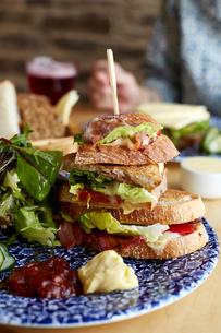 Sandwich on plate with salad, close-upの写真素材 [FYI03571196]
