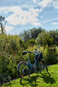 Bicycle on stand in rural setting, Cork, Irelandの写真素材 [FYI03571201]