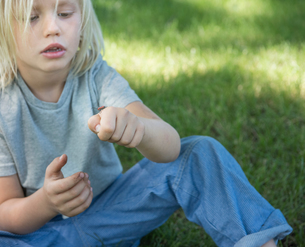Boy holding insectの写真素材 [FYI03571632]