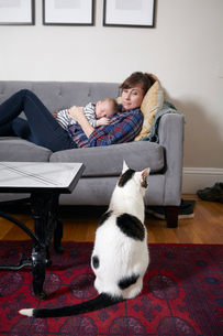 Mother and baby boy lying on sofa looking at catの写真素材 [FYI03571720]