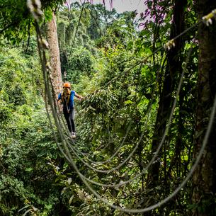 Woman crossing rope bridge in forest, Ban Nongluang, Champassak province, Paksong, Laosの写真素材 [FYI03571803]