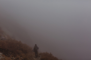Rear view of male hiker hiking up misty mountain track, Mineral King, Sequoia National Park, Califorの写真素材 [FYI03572795]
