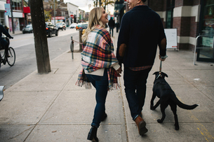 Young couple walking dog along street, rear viewの写真素材 [FYI03573204]