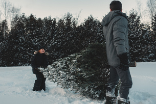 Father and daughter out getting their own Christmas treeの写真素材 [FYI03573919]
