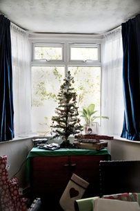 Artificial christmas tree in bay windowの写真素材 [FYI03574279]