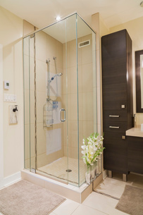 Contemporary brown laminated wood vanity and clear glass shower stall in bathroom of renovated grounの写真素材 [FYI03574468]