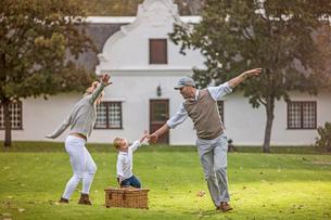Family having picnic in parkの写真素材 [FYI03574703]