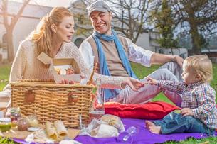 Family having picnic in parkの写真素材 [FYI03574709]