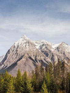 Canadian Rockies, Golden, British Columbia, Canadaの写真素材 [FYI03575541]