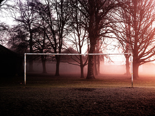 Bare trees and goalpost in misty park at sunriseの写真素材 [FYI03576735]