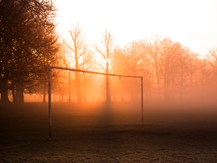 Bare trees and goalpost in misty park at sunriseの写真素材 [FYI03576736]