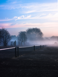 Row of tennis nets in misty park at sunriseの写真素材 [FYI03576739]
