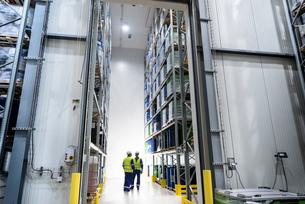 Worker with oil barrels in storage in oil blending factoryの写真素材 [FYI03577003]