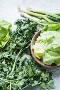 Parsley, butterhead lettuce leaves and spring onionsの写真素材 [FYI03577475]