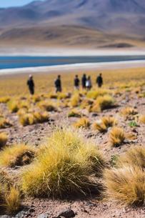 People visiting lake miscanti, San Pedro de Atacama, Chileの写真素材 [FYI03578670]
