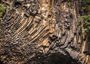 Textured rock face, Toketee Falls, Oregon, USAの写真素材 [FYI03580539]
