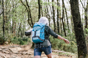 Rear view of mature female backpacker walking in forest, Scandicci, Tuscany, Italyの写真素材 [FYI03581674]