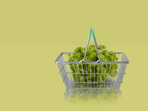 Lettuce in miniature shopping basket on green backgroundの写真素材 [FYI03581693]