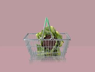 Sicilian purple broccoli in miniature shopping basket on purple backgroundの写真素材 [FYI03581694]