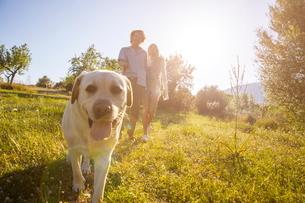 Young couple walking dog in sunlit rural field, Majorca, Spainの写真素材 [FYI03581924]